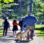 single Parents, blended family, transition