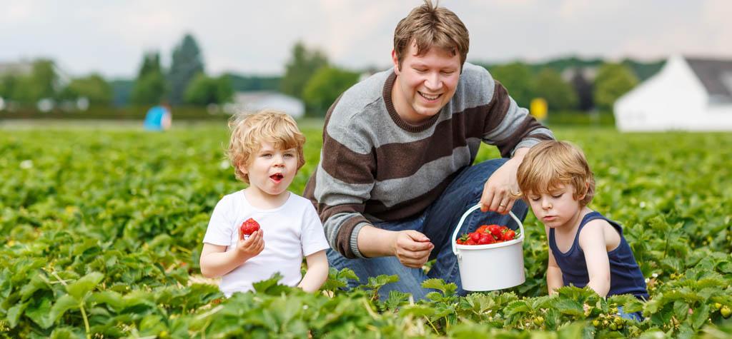 Gardening, single parent, single parenthood, activities, single mom